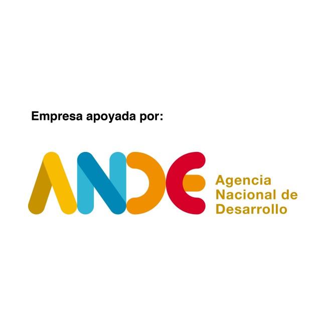 ande logo